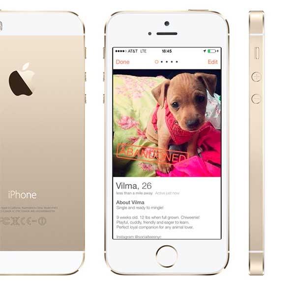 Tinder, la app para ligar se llena de perfiles de perros