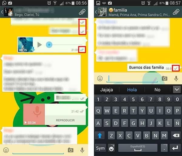 whatsapp doble check grupo