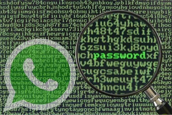 whatsapp seguridad eeuu