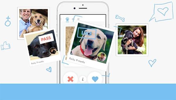 Tindog, la app para ligar al estilo Tinder pero para perros