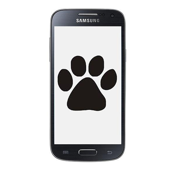 Cómo adoptar y cuidar de tu mascota desde el móvil