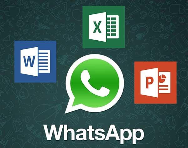 WhatsApp ya permite enviar documentos de Word y Excel