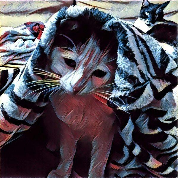 10 filtros para tus fotos en Prisma que deberías probar