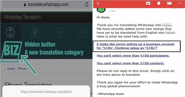 pruebas de whatsapp business