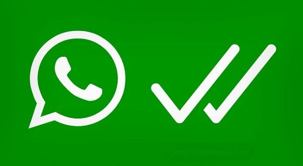 whatsapp tick