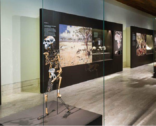 Samsung crea una app de realidad virtual para el Museo Arqueológico Nacional