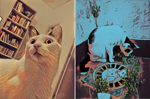 efectos prisma tranformar las fotos en cuadros