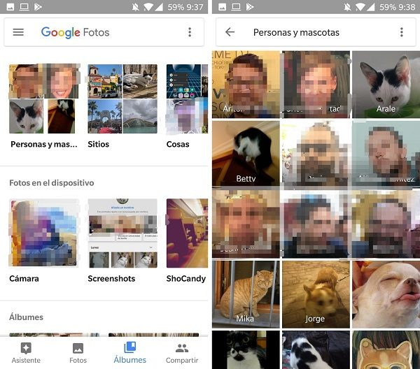 google fotos albumes mascotas