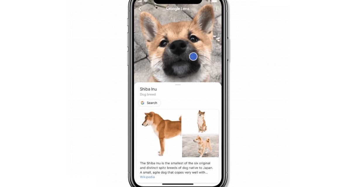Así puedes usar Google Lens en las búsquedas de Google en iPhone