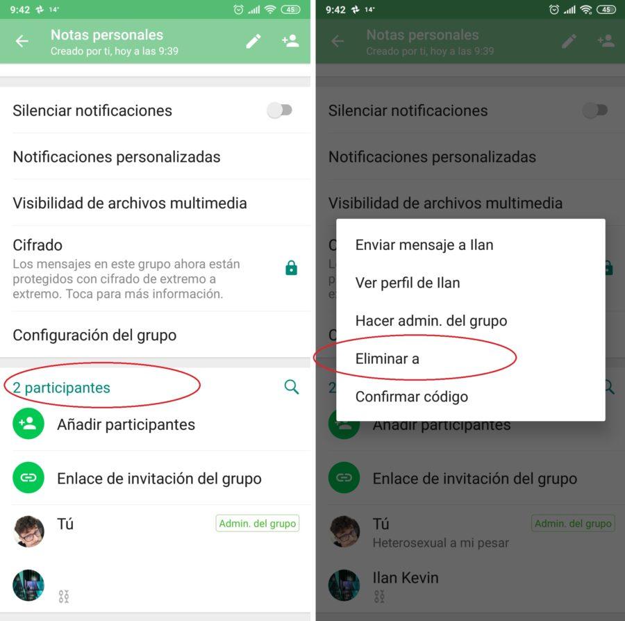 eliminar participante whatsapp