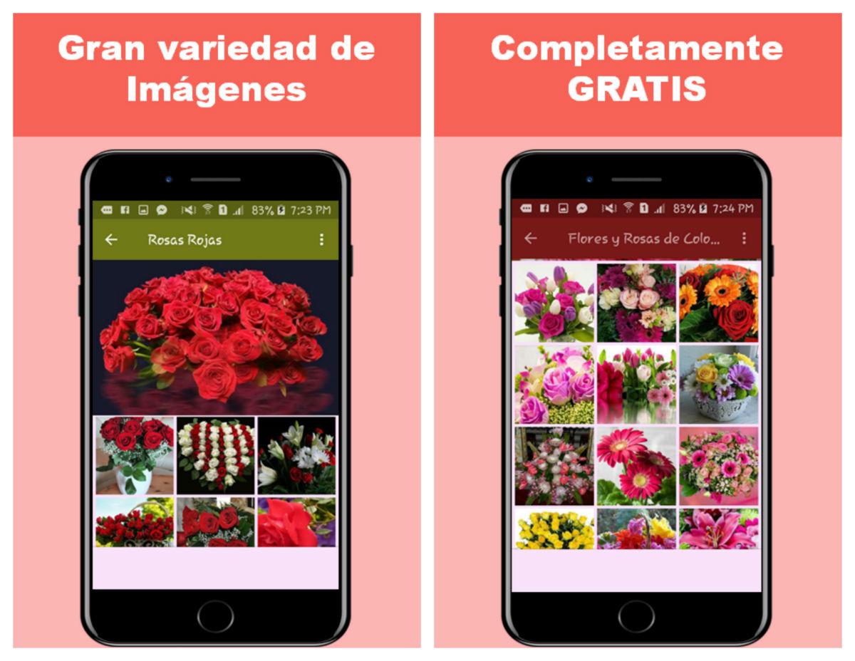 Flores app