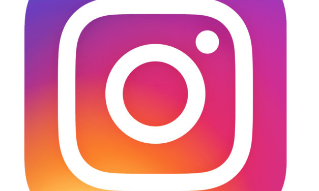 Cómo borrar el historial de fotos y vídeos a los que has dado like en Instagram