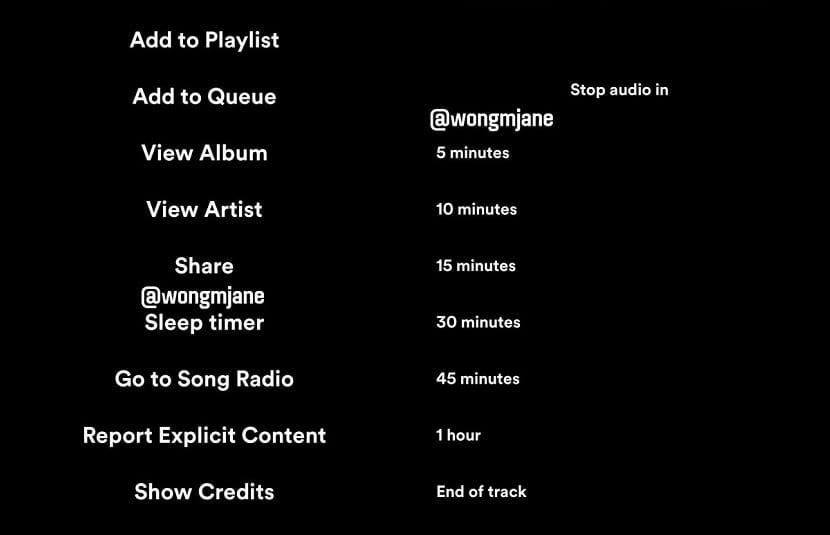 Spotify-temporizador