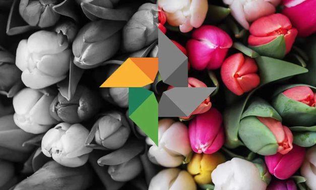 Google Fotos permitirá colorear fotos en blanco y negro de forma automática