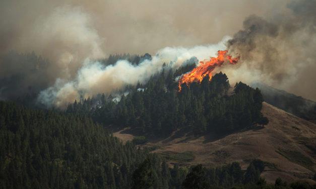 3 aplicaciones para seguir en directo el incendio de Gran Canaria