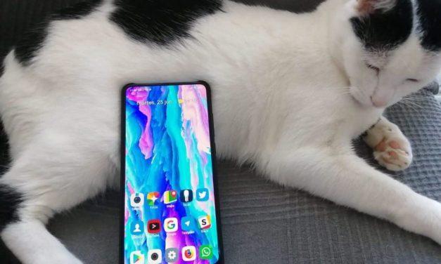 5 apps útiles que deberías descargar en tu móvil Xiaomi